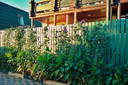 Уникальный домик расположенный на 1-й линии от моря в Геленджике
